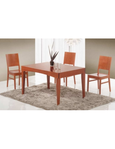 Tavolo in legno di faggio rettangolare art. 2212 120x90 cm